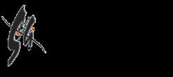 Spectrum Analysts logo