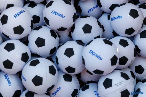 Soccer balls with Goals logo