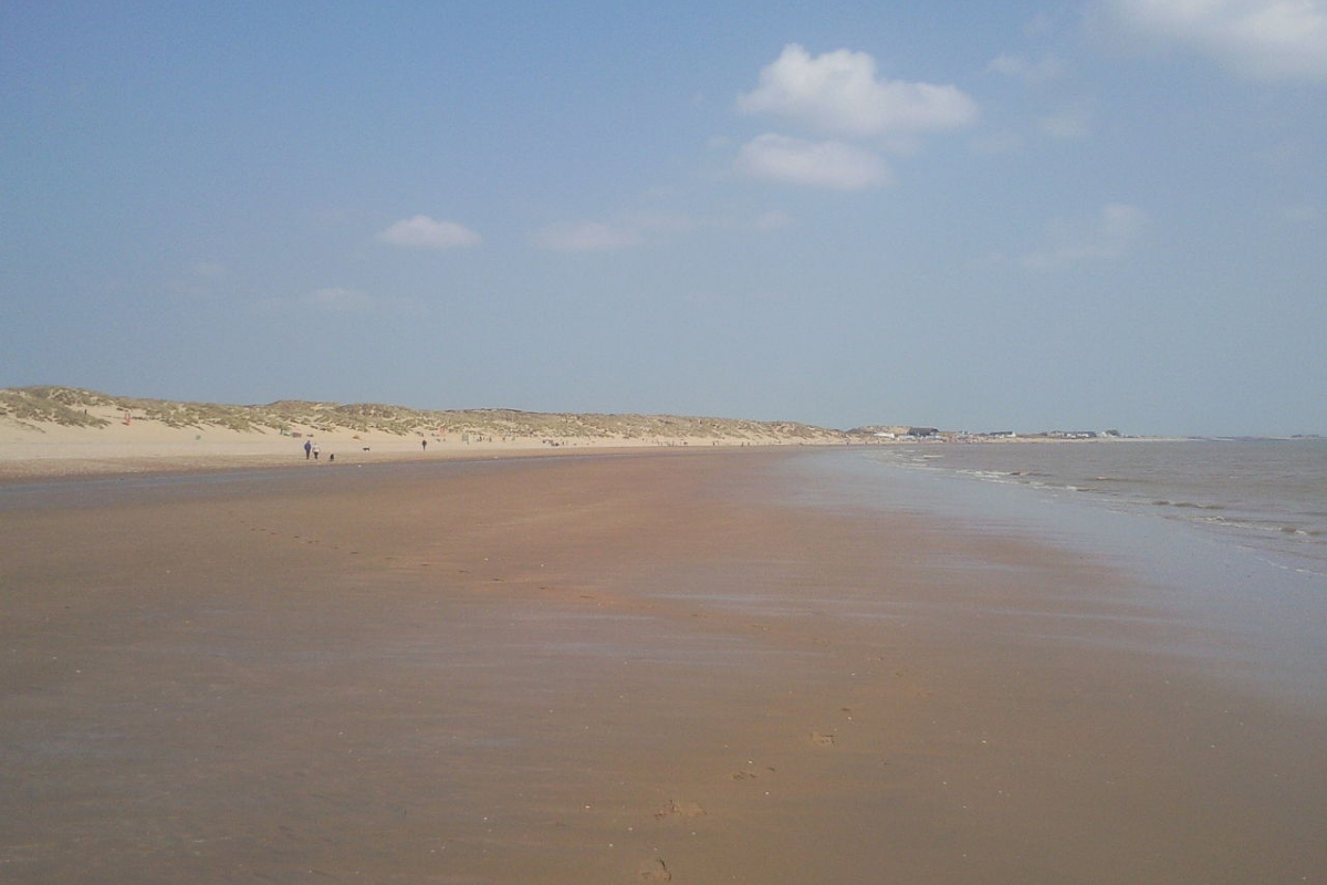 Camber Sands, low tide –Wikimedia Commons