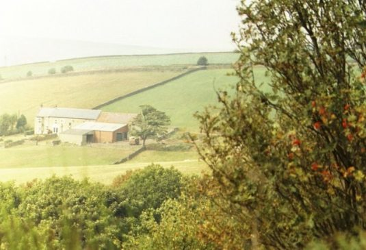 Rural landscape, County Durham. Photo Wikipedia
